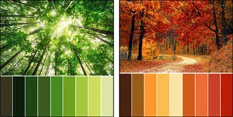 Colour Theory    Colour Wheel  Interior Design