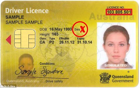 Wondering what steps are involved to get your motorcycle licence? Queensland to roll out new driver's licence without gender   Daily Mail Online