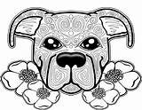 Coloring Dog Pages Adults Printable Getcolorings sketch template