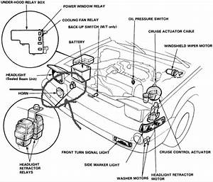 Where Can I Find A Diagram Of The Honda Accord Engine Compartment  Need To Fix The  U0026quot Horn  U0026quot  Don U0026 39 T