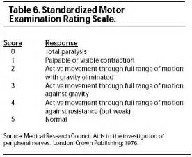 Motor Muscle Strength Scale