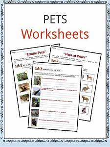 Household Pets Facts And Worksheets For Kids  U2022 Kidskonnect