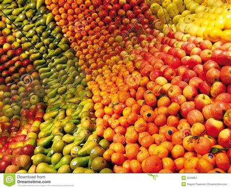 colorful fruit colorful fruit stock image image 2249961
