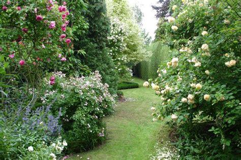 Rosier Jardin De Valloires by Avant Apr 232 S 4 Le Jardin Par Passion