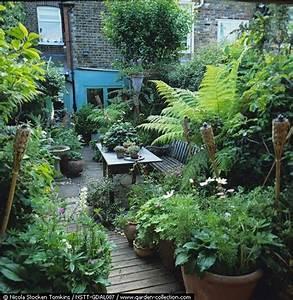 Pflanzen Für Dachterrasse : kreativer dachgarten dachterrasse sichtschutz pflanzen ~ Michelbontemps.com Haus und Dekorationen