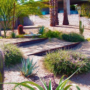backyard desert landscaping houzz
