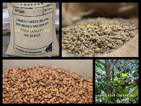 Gold, red, and black honey coffees, on the other hand, have much more mucilage remaining. World's Best Coffee - Nicaragua Red Honey - El Especial Microlot | World's Best Coffee - Order ...