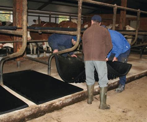 ireland rubber cow matting renovation dividers kraiburg