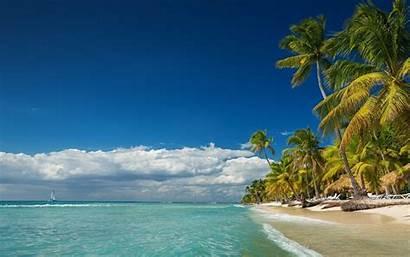 Landscape Beach Summer Island Tropical Palm Nature