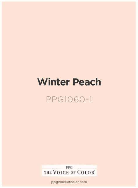 voice of color paint color by ppg voice of color winter