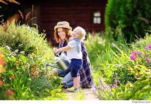 Gartenarbeit Im August : rund um rosenbogen und rankhilfe ~ Lizthompson.info Haus und Dekorationen