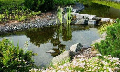 Japanischer Garten Leinefelde by Leinefelde Worbis Tourismus Freizeit 220 Ber Uns