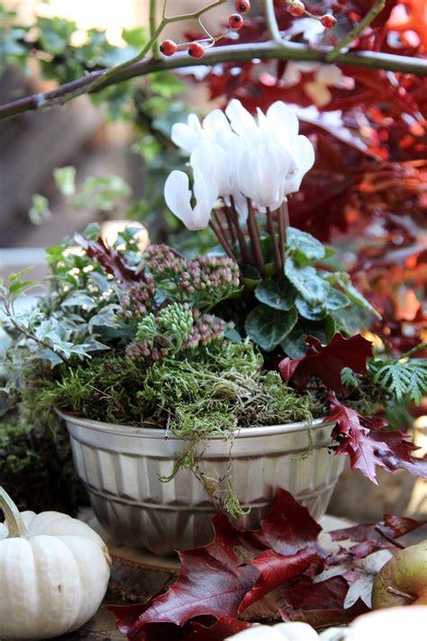 Winterliche Gartendeko by Upcycling Alte Backform Bepflanzt Garten Herbst