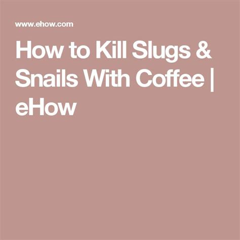 how to kill slugs how to kill slugs snails with coffee snail and gardens