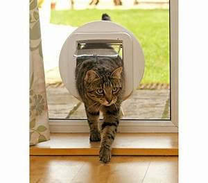 Katzenklappe Für Fenster : sureflap katzenklappe mit mikrochiperkennung 21 x 21 cm dehner garten center ~ Eleganceandgraceweddings.com Haus und Dekorationen