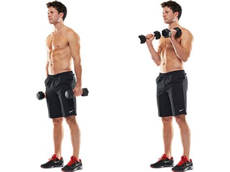 Standing Preacher Curl Bench by 25 Exercises To Do At Home