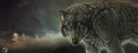 Animated Wolf Wallpaper Hd - wolf wallpapers wallpaper cave