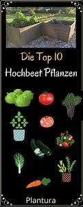 Welche Pflanzen Vertragen Sich Tabelle : die besten 25 gartenweg ideen auf pinterest garten wege ~ Lizthompson.info Haus und Dekorationen