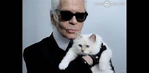 Choupette Chat Karl : karl lagerfeld et son chat choupette posent pour net a porter purepeople ~ Medecine-chirurgie-esthetiques.com Avis de Voitures