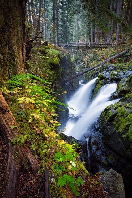olympic national park duc sol washington autumn michael riffle river falls fall usa state