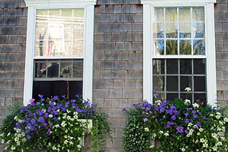 window box basics   house