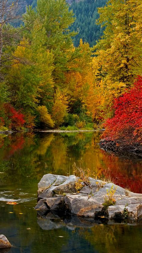 Free Download This Bing Wallpaper Images Autumn And