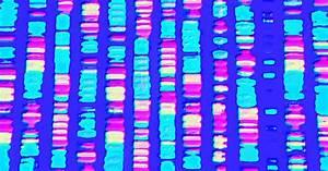 Get Into Your Genes