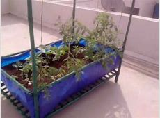Roof Top Vegetable Garden Module in Bangalore, India YouTube