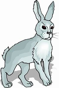 Gray Rabbit Clipart   ClipArtHut - Free Clipart