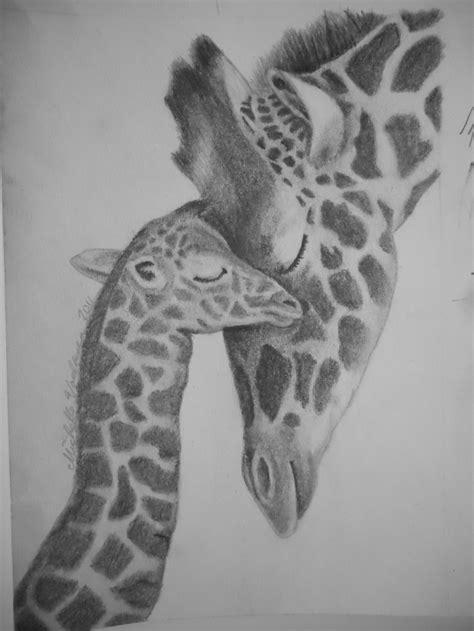 giraffe  baby pencil drawing   giraffe tattoos