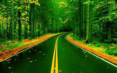 Nature Road Forest Bus Environment Malaysia Wallpapers