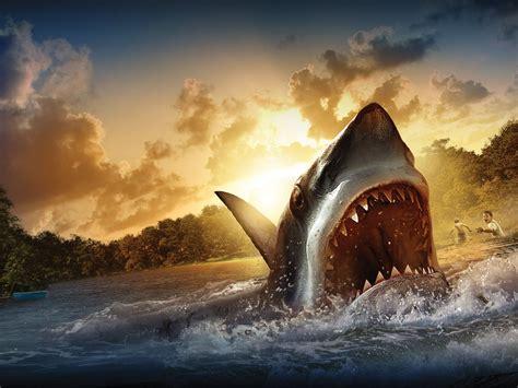 1920X1080 Shark Desktop Backgrounds