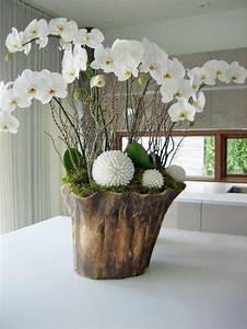 Orchideen Im Glas : dekoration mit orchideen f r ein stilvolleres interieur ~ A.2002-acura-tl-radio.info Haus und Dekorationen