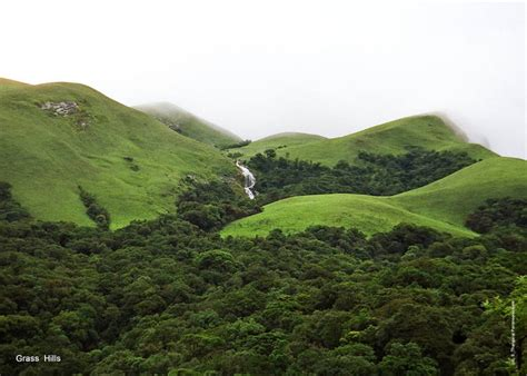 Western Ghats face threat as state governments dump