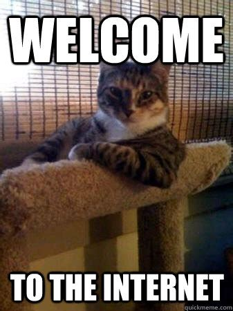 Internet Cat Meme - welcome to the internet the most interesting cat in the world quickmeme