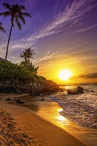 Beautiful Beach Sunset Palm Trees Hawaii