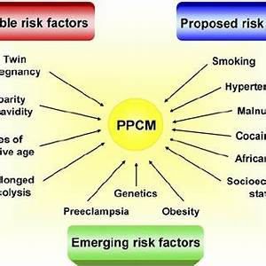 Diagnostic algorithm for peripartum cardiomyopathy. 1 ...