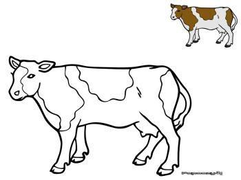 jeu gratuit de cuisine coloriage vache catégorie vaches papoozy fr