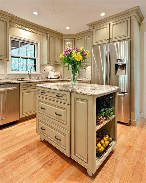 ideas for kitchen cabinets modern kitchen cabinet paint color ideas photo 5 kitchen