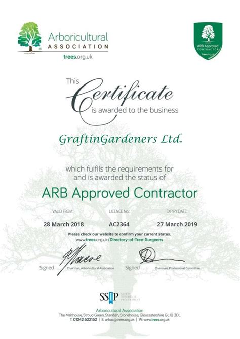 insured qualified tree surgeons south west london