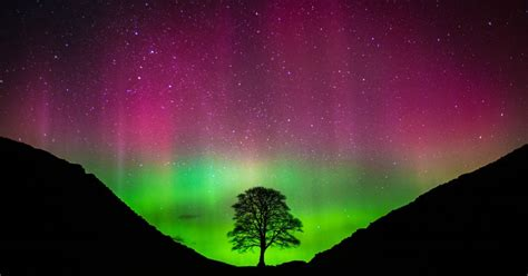 When Can You See The Northern Lights In Alaska by When Can You See The Northern Lights In The East