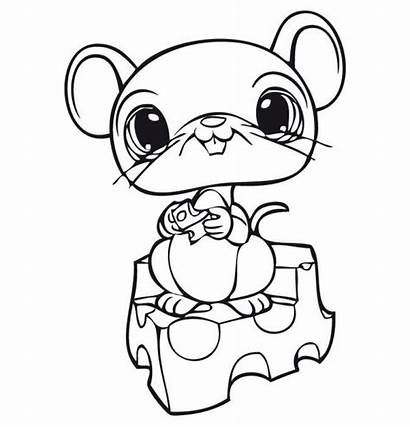 Coloring Pages Pet Mouse Cheese Animal Eating