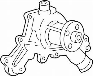 Ford Explorer Engine Water Pump  Cooling  Liter  Sohc