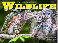 NH Wildlife Calendar Shop New Hampshire Fish and Game
