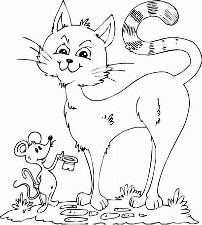 Cat Mouse Coloring Fancy Pages Cats Painting