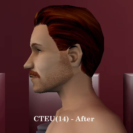 The Sims 2 Face Replacement Templates by Mod The Sims Replacement Face Templates For Cas Bodyshop