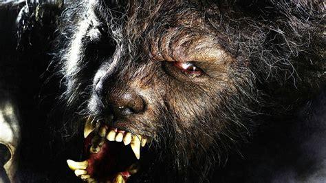 Horror Wolf Hd Wallpaper