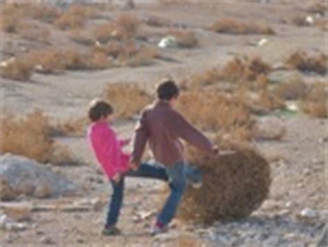chambre d hote lac d orient janvier février 2012 wadi rum une immense étendue de