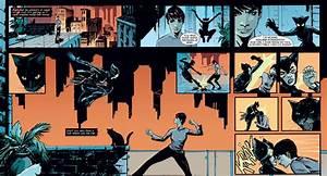 Genevieve Valentine - Catwoman #36: Reviews, Sneak Peeks ...