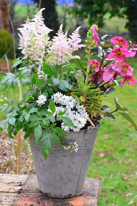 r 233 alisez une pot 233 e de printemps d 233 tente jardin